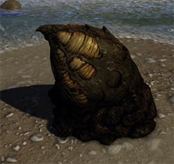 A Culex nest